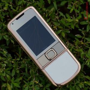 V? ??p c?a Nokia 8800 Gold Arte